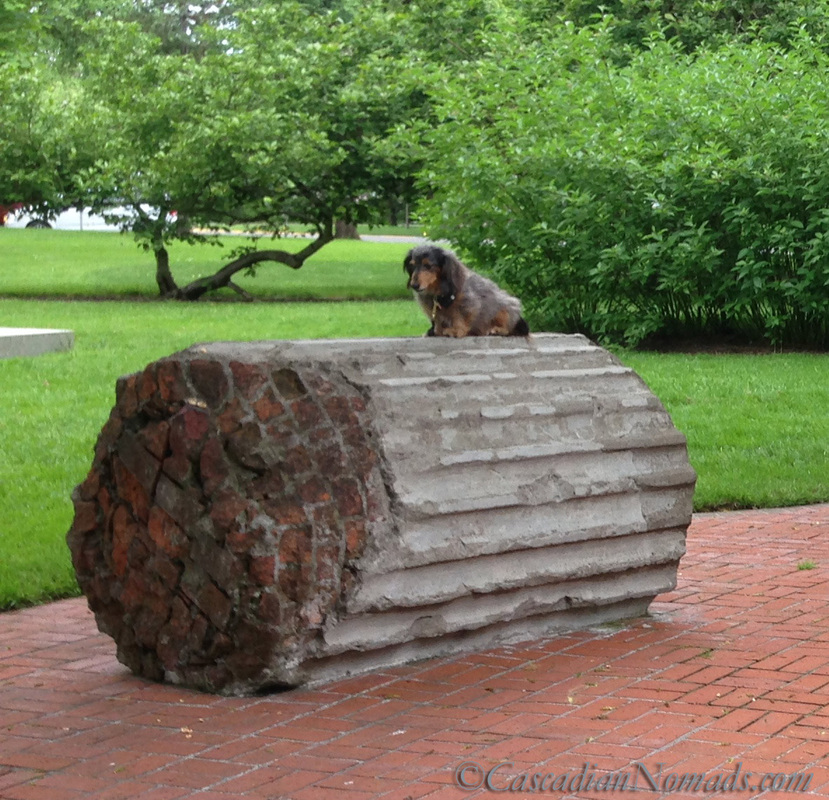 A miniature long haired dachshund perched upon an Oregon state capitol column segments, Salem, Oregon