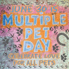 Multiple Pet Day is June 30th