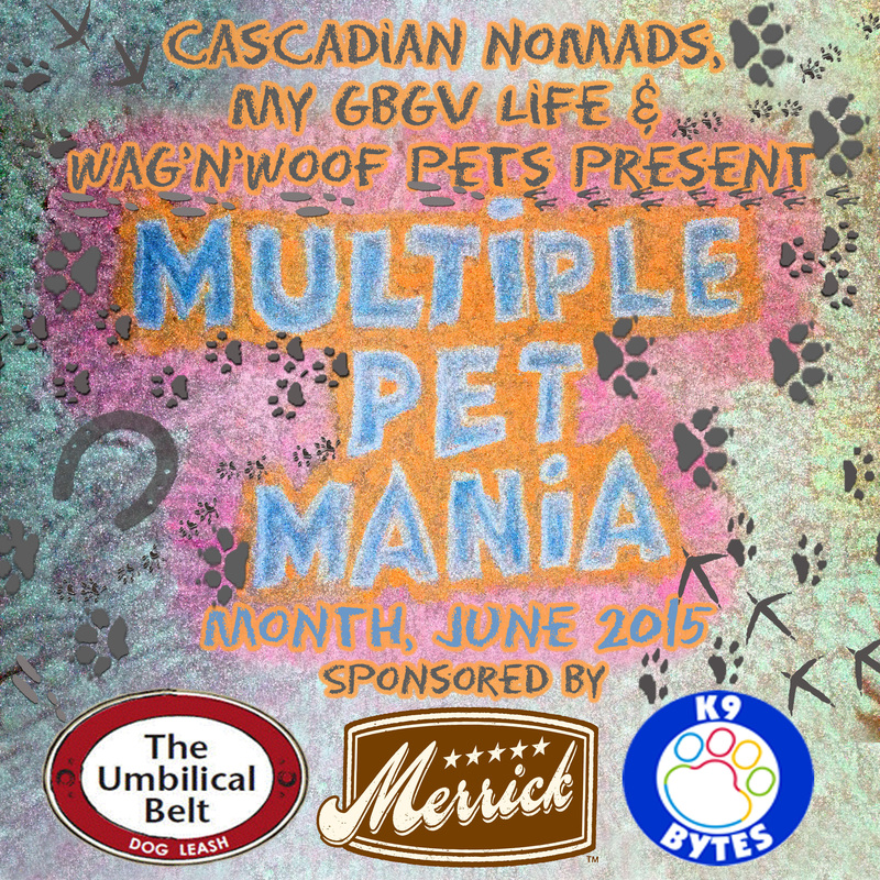 Multiple Pet Mania Badge