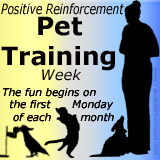 Positive Reinforcement Pet Training Week