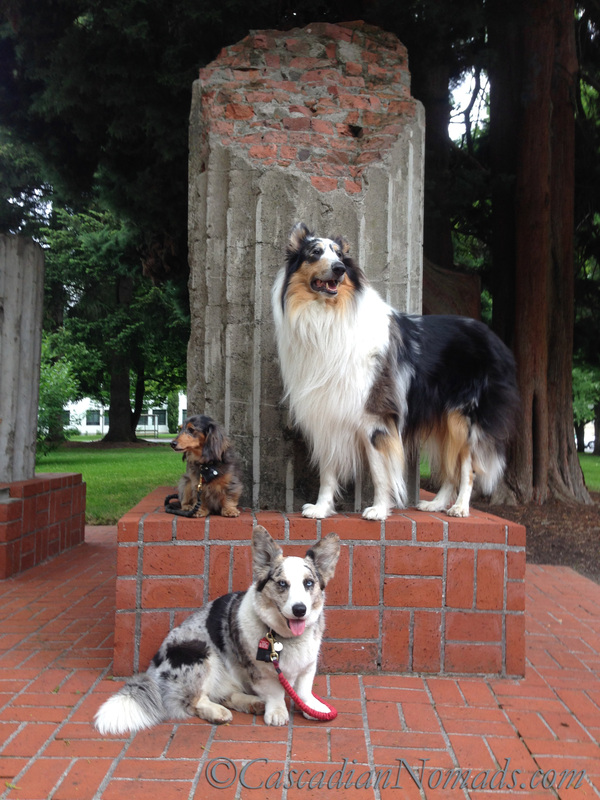 Three dogs pose with the Oregon state capitol column segments, Salem, Oregon