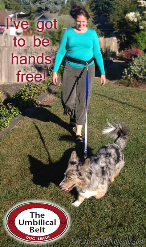 I've got to be hands free with The Umbilcal Belt Hands Free Dog Leash