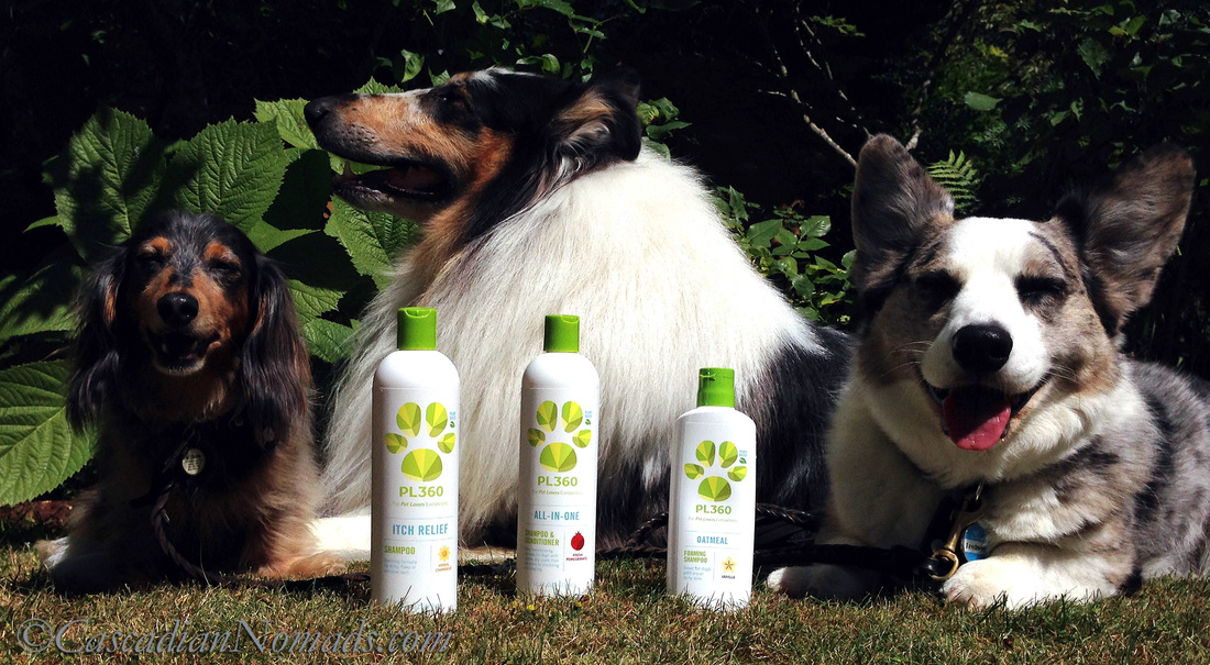 Three dogs with three different grooming needs covered naturally by PL360 products. #MultiPetMania product review.