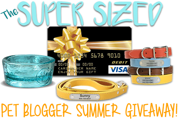 The Super Sized Pet Blogger Summer Giveaway Image