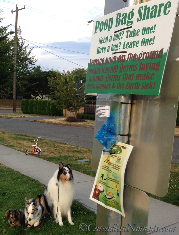 Homemade Poop Bag Dispenser Successes: Help Neighbors Remember To #ScoopThatPoop