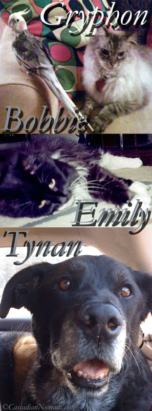 Cascadian Nomads Founding Pets: Cockatiel Bobbie Birdie, cats Emily and Gryphon and dog Tynan.