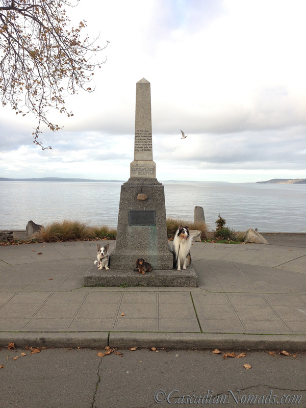 A Remarkable Seattle Site's Historic Monument Sounds Dull But There Are Dogs: corgi, dachshund, collie and seagull at the Denny Landing Monument