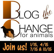 Blog The Change For Animals #BtC4Animals