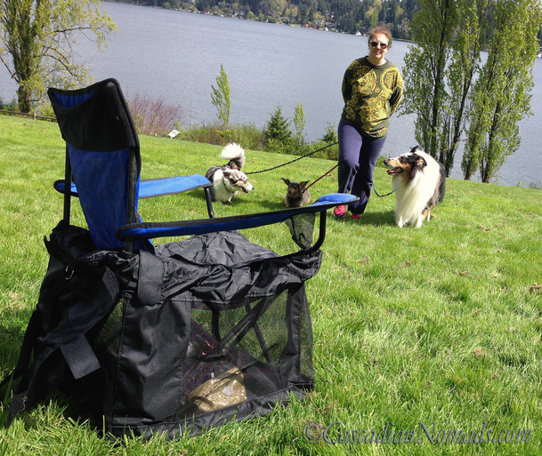 Amazing Make An Old Quad Folding Chair A Dog Cats Favorite Camp Machost Co Dining Chair Design Ideas Machostcouk