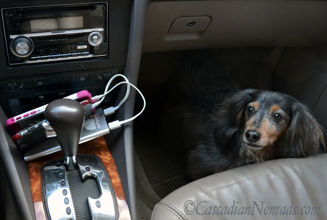 Pachyderm POWER 10,000mAh Portable Device Charger/Power Bank charges two iPhones on a pet friendly road trip.